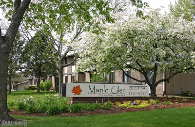 Maple Glen