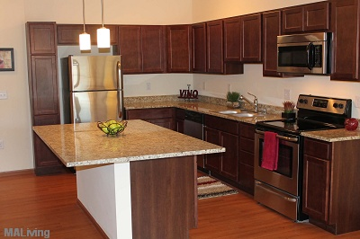 Watermark Lofts - Kitchen with Granite Counters