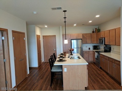 Paragon Place at Bear Claw Way - Stainless Steel Appliances and Kohler Gooseneck Faucets